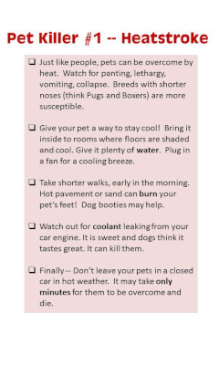 Heatstroke kills pets