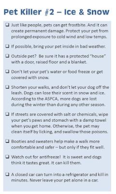 Cold kills pets