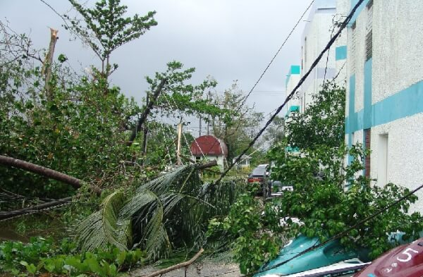 Hurricane, downed power lines